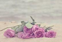 flowers and romantic stuff / by Tanchi Pérez Conejeros