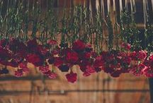 FLOWERS AND ARRANGEMENTS / by Twofold LA