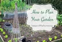garden tips, ideas, how to and more / by Sophia Oxenbol