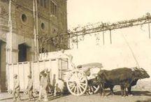 Toros y toreros de España (bullfight) / Hubo un antes y un después de Juan Belmonte, hacedor del toreo moderno / by José Miguel Rubio Polo