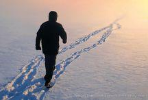 Landscape - Winter / by Anne Jones
