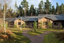 Whinfell Forest / Whinfell Forest is nestled in a stunning landscape on the edge of the Lake District and is a wildlife haven, home to one of the few remaining colonies of Red Squirrels in the UK. / by Center Parcs UK