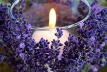 Lavender Inspired / Ideas and creativity within the world of Lavender / by Ali'i Kula Lavender