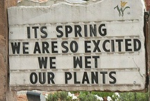 Gardening / by Kris Schreder