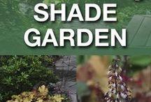 gardening info / by Curly Jefferson