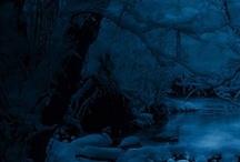 Winter / Beauty of winter / by Kendal Liden
