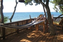 Roatan Island, Honduras  / My next travel destination!   :). Can't wait! / by Sherry Fiorenzo