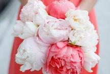 Wedding it ! / by Fantastic.Co  !