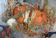 Fall Holidays / by Gail Loveland