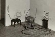 Black & White Cats in Color / all kinds of art with black and white cats and color / by Janet Sternberg