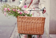 Flower. Bikes. / by Pelloa