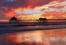 California / My Beautiful Home State / by Carolyn Zawilski