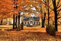 Fall House / by Glorynn Ross