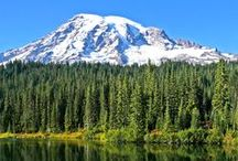 Explore Mount Rainier  / by Travel Tacoma + Pierce County