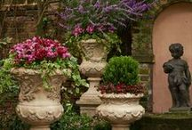 gardens and greenhouses / by Olga
