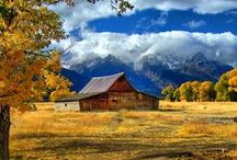Barns. Cottages / by Trudy Allen
