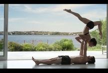 Jógová videa / Videa, která musíte vidět! / by YogaGuru CZ