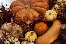 Autumn / by Starla Spencer-Woodards