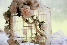 Bird Cages / I started looking at bird cage pins to get an idea of how best to decorate a plain  little cage like Tweety Bird used to have  and somehow it just mushroomed  and now a thousand pins later, I have decided!  Little pink roses and vines! / by Marianne Taff