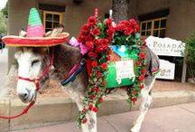 Santa Fe Scene  / Activities, events and daily life in historic Santa Fe, New Mexico  / by La Posada de Santa Fe Resort & Spa