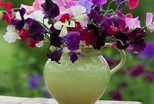 Jugs of Flowers! / by Gloria Cain
