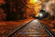 Tracks. &. Trains / by Gloria Cain