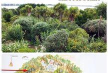 Kitchen gardens & permaculture / by Karen Kluckow