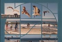 Summer & Beach Scrapbooking Ideas / This Board shows Beach Photo Collage layouts using different stencils as the design.  / by Lea France Scrapbooking (Photo Collage)