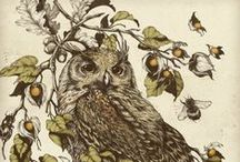 Illustrations / Illustrator (adobe cs5 ) / by Ilyes Petit