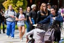 Helping and Caring / A Culture of Helping  / by SJSU