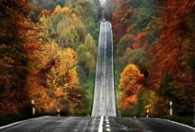 Road Trip... / by Janet Nishi