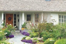Landscaping Ideas for Our Rambler / Trees, shrubs, perennials, and hardscaping I'm considering for our front yard. Emphasis on drought-tolerant, easy-care plants and small trees - evergreen and deciduous - that offer multi-season interest and can withstand extreme heat and cold.  / by Amy Camano