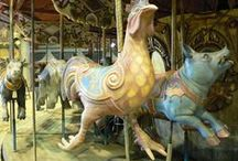 Carousels / by Susan Goold