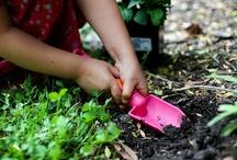 Outdoors & Garden Play / by CareLuLu