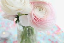 Les fleurs et les jardins   / Favorite flowers / by Greta Ostrovitz