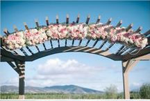 Amazing Arches / by Lake Lanier Legacy Weddings