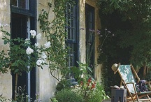 Garden ideas / by Helen Mills