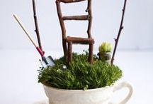 miniatures / by Lois Siegman