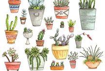 Succulents / by Grace Chow