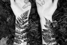 Nature tattoos / by Svante Frebrandost