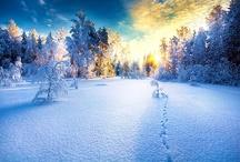 Yayyyy....!!! Its a holiday ! / by Tanvi Latta