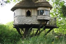 Treehouses / by Lærke Duus