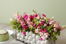 Floral art............. / by Anjali Desai