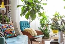 Interiors:  modern, organic, warm / by Mallory B.