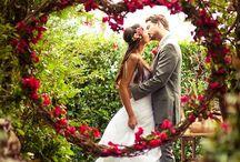 Weddings / by Teresa Colella