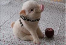 Animals - Piggies / by Danielle Edwards