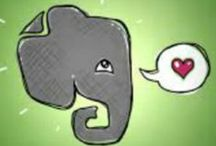 Evernote for Teachers / A collection of Evernote Tips, Tricks and Ideas for the classroom / by Joanne Clark