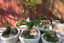 Gardening Inspirations  / by My Em