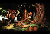 Popular Theme Park Videos / by Undercover Tourist
