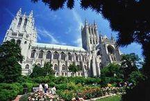 Churches Grand & Small / by JoAnn Shoe Queen 1